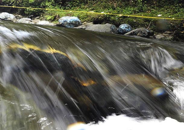 Río Pance a su paso por el pueblo Pance, corregimiento de Cali (Colombia 21/3/2012).