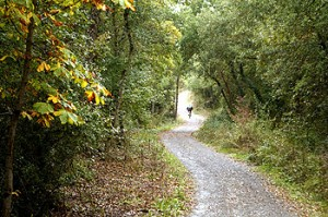 Parque de Armentia, a las afueras de Vitoria, Capital Verde Europea para 2012