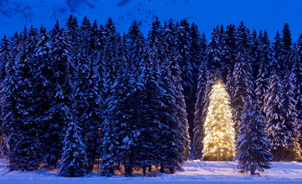 Navidad: claves para una buena redacción | Fundéu BBVA